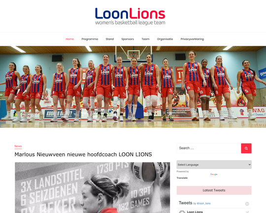Loon Lions
